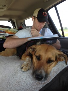 road-trip-with-big-dog
